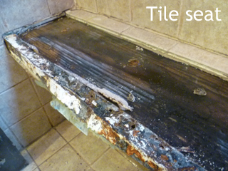 my plan was to replace the entire shower floor and remove the tiled seat